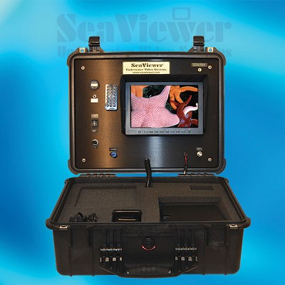<strong>FISH CONSOLE - Analog</strong><p>VIEW real-time video at the surface.</p>